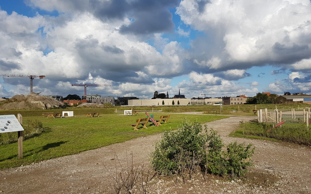 Fase 1 van Suikerpark is van start gegaan: een overzicht